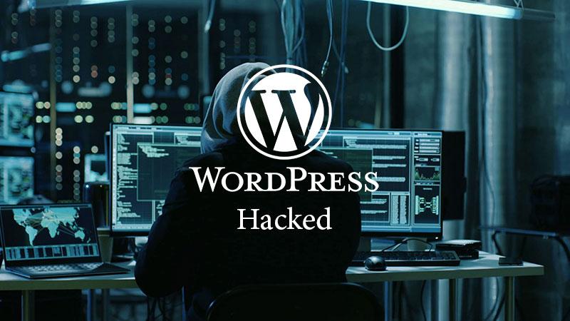 چگونه وردپرس را پس از هک شدن بازیابی کنیم؟